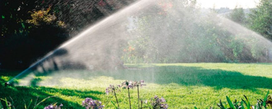 irrigation-system-for-your-greenhouse-overhead-spray-systems