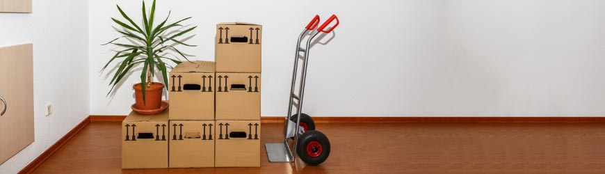 Best Hand Trucks Reviews
