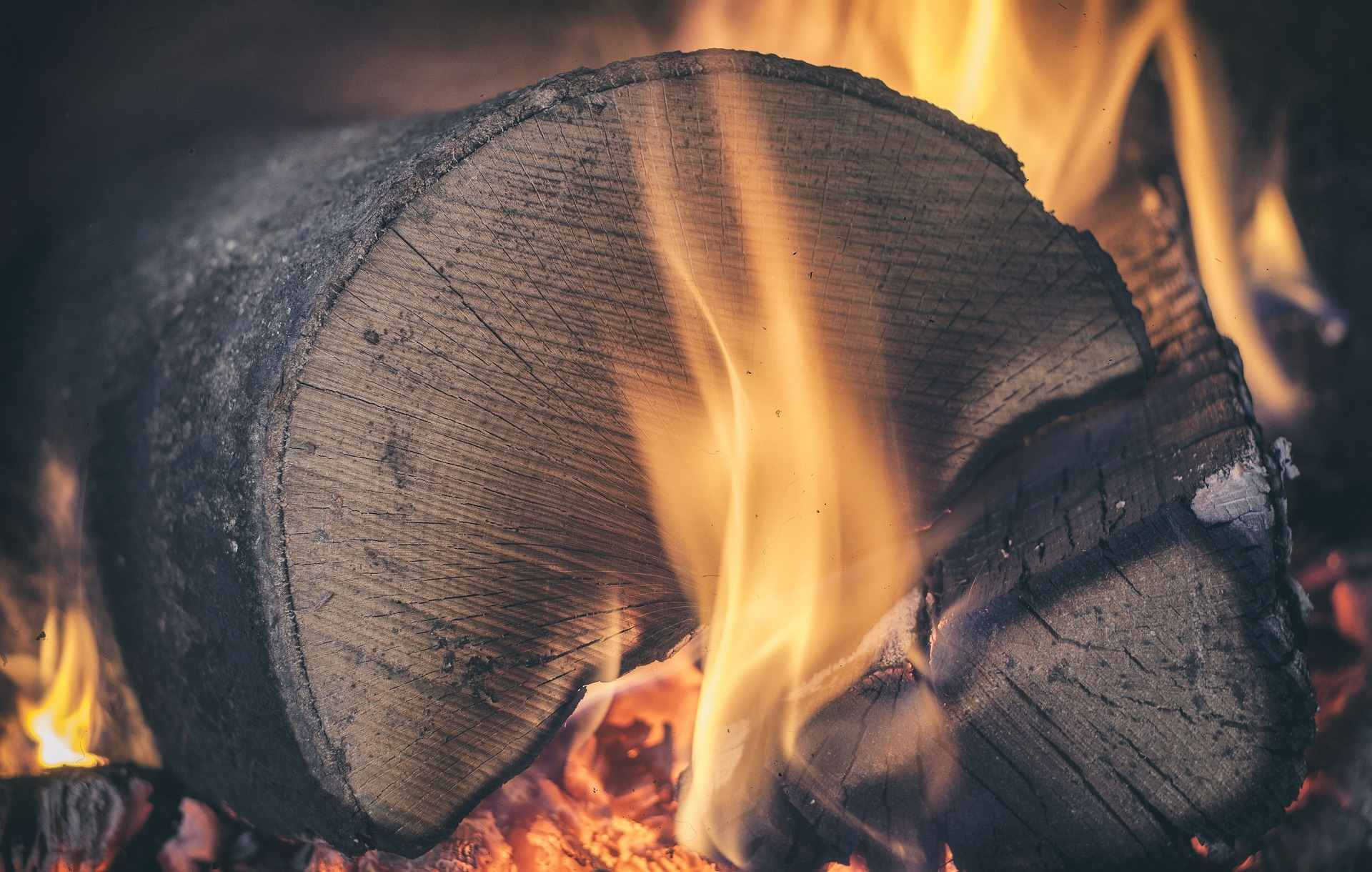 Best Firewood Chart Wood Types For Your Fireplace Or Campfire