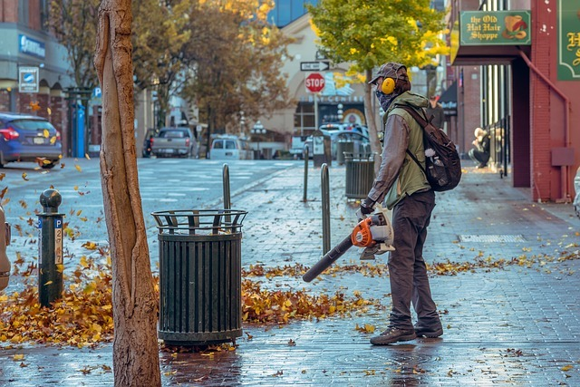 The Best Cordless Leaf Blower Options To Invest In Today
